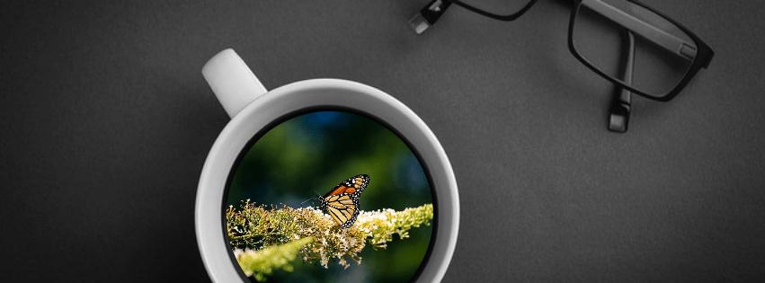 Mockup,                Coffee,                Old,                Inspiration,                Life,                Photo,                Image,                Black,                 Free Image