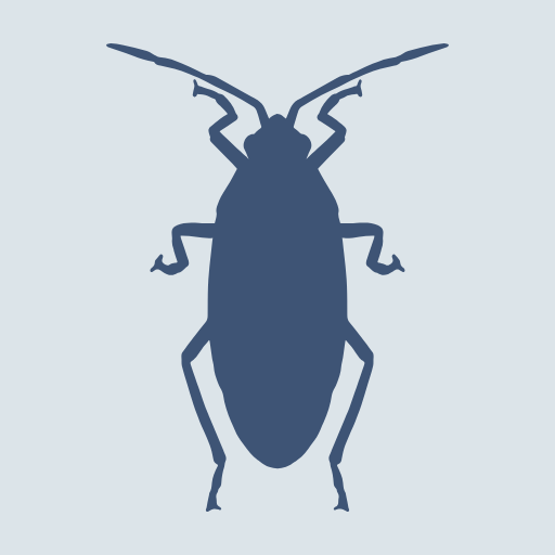 Insect,                Invertebrate,                Fauna,                Organism,                Membrane,                Winged,                Beetle,                Pest,                Arthropod,                Weevil,                Graphics,                Cockroaches,                Shape,                 Free Image