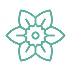 Icon Graphic - #SimpleIcon #IconElement #daffodil #nature #flower #botanical #petals