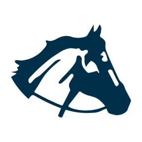 Icon Graphic - #SimpleIcon #IconElement #head #silhouette #horse #view #animals #side #variant