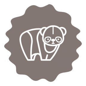 Icon Graphic - #SimpleIcon #IconElement #border #wild #panda #mammal #zoo #squares
