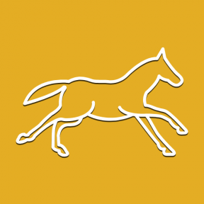 Icon Graphic - #SimpleIcon #IconElement #horses #horse #side #running #outline #animals #animal #shape #view