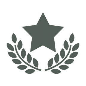 Icon Graphic - #SimpleIcon #IconElement #star #symbol #olive #award #recognition #symbolic #awards #branches #signs