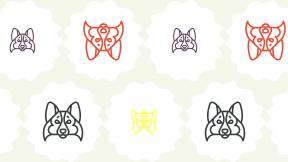 HD Pattern Design - #IconPattern #HDPatternBackground #circles #rough #mammal #squares #raggedborders #frames #rectangles #animals