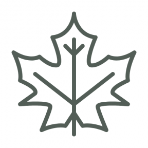 Icon Graphic - #SimpleIcon #IconElement #nature #leaf #maple #fall #autumn #botanical