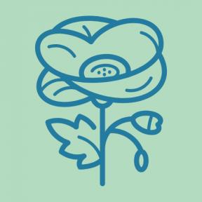 Icon Graphic - #SimpleIcon #IconElement #garden #park #nature #flower #gardening #Papaveraceae