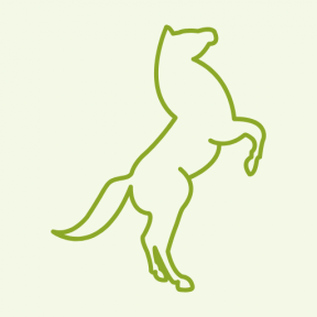 Icon Graphic - #SimpleIcon #IconElement #outlined #paws #shape #outline #animal #stand #horse