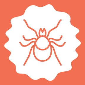 Icon Graphic - #SimpleIcon #IconElement #Araneae #animals #circles #wavy #bug #arachnid #frames #fancy