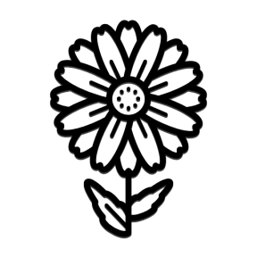 Icon Graphic - #SimpleIcon #IconElement #flower #nature #perennis #park #gardening #Bellis #garden