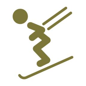 Icon Graphic - #SimpleIcon #IconElement #ski #ice #skiing #view #down #sports #sportpictos