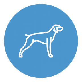 Icon Graphic - #SimpleIcon #IconElement #animals #mammal #black #dog #shape #symbol #pet #animal #circles