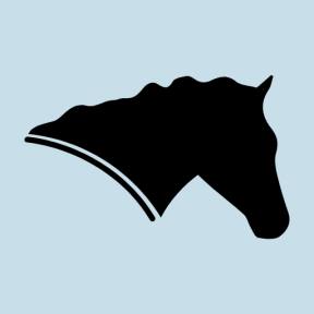 Icon Graphic - #SimpleIcon #IconElement #animals #side #variant #head #horses #horse #silhouette #view