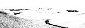 Photo Filter - #PhotoEffect #PhotoFilter #PhotographyFilter #soil #sahara #desert #d'Orcia #sandy