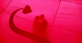 Photo Filter - #PhotoEffect #PhotoFilter #PhotographyFilter #pink #product #organ #wallpaper #line #circle