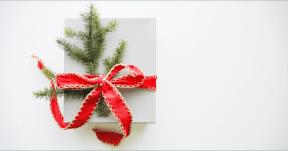Photo Filter - #PhotoEffect #PhotoFilter #PhotographyFilter #ribbon #christmas #decoration #ornament