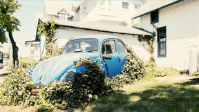Photo Filter - #PhotoEffect #PhotoFilter #PhotographyFilter #Vintage #parked #motor #Volkswagen #growing #size #yard