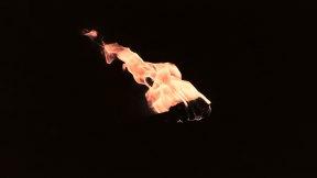 Photo Filter - #PhotoEffect #PhotoFilter #PhotographyFilter #flame #fire #wallpaper #membrane #event #winged #insect #computer