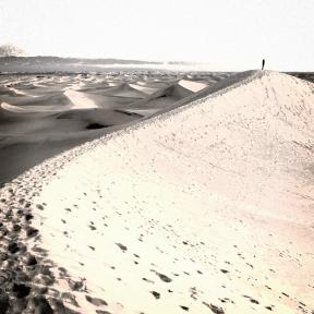 Photo Filter - #PhotoEffect #PhotoFilter #PhotographyFilter #landscape #dune #desert #landform #singing