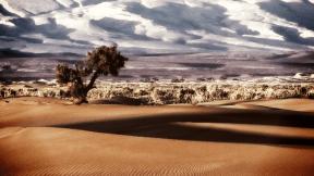 Photo Filter - #PhotoEffect #PhotoFilter #PhotographyFilter #erg #sahara #landscape #desert #dune #sand #ecosystem #landform