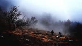Photo Filter - #PhotoEffect #PhotoFilter #PhotographyFilter #ridge #winter #walk #hike #wilderness #fog #mist