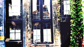 Photo Overlay Design - #PhotoOverlay #PhotoFilter #Photography #AutumnLeaves #straat #window #OverlayPhoto #london