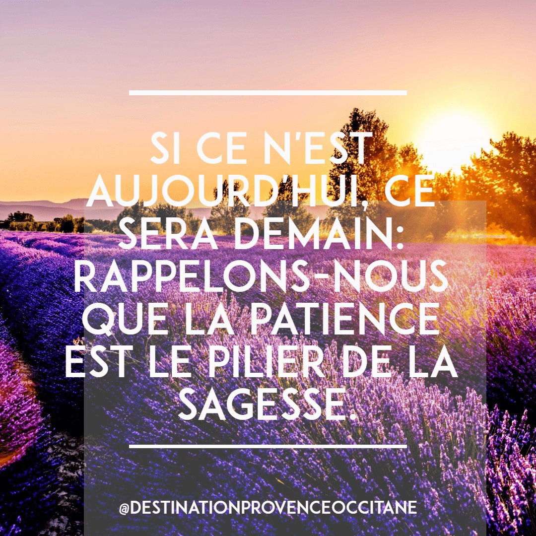 Purple,                Text,                Lavender,                Morning,                Sky,                Font,                Advertising,                Friendship,                Summer,                Poster,                Quote,                Simple,                White,                 Free Image