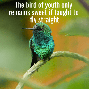The bird of youth only remains sweet if taught to fly straight