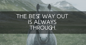 Quote Card Design - #Quote #Saying #Wording #mammal #front #horse #gray #foot #mustang #ecoregion #shot