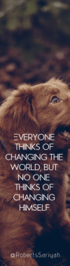Wording Banner Ad - #Saying #Quote #Wording #duck #dog #breed #mammal #golden #snout