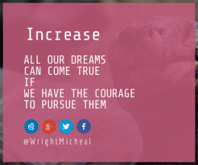 Wording Banner Ad - #Saying #Quote #Wording #art #brand #font #wing #azure #product #graphics #signage #turtle #reptile