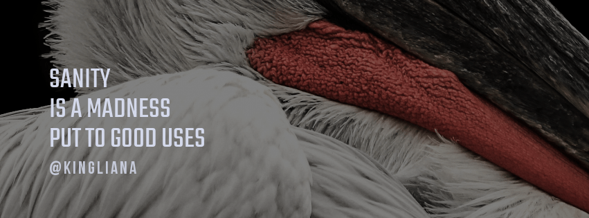 Mammal,                Fur,                Vertebrate,                Textile,                Thread,                Material,                Wool,                Close,                Up,                Wood,                Feather,                Beak,                Seabird,                 Free Image