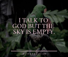 Wording Banner Ad - #Saying #Quote #Wording #beak #parrot #macaw #with #perico #lovebird #parakeet #perched #orange