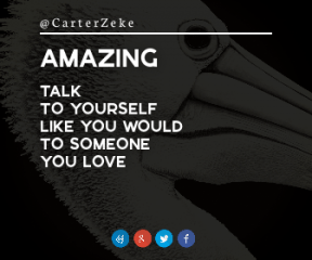 Wording Banner Ad - #Saying #Quote #Wording #bird #biology #azure #head #pelecaniformes #white #symbol #seabird #product