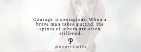 Wording Cover Layout - #Saying #Quote #Wording #breed #social #dog #networking #sighthound #like #media #longdog #saluki