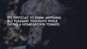 Wording Cover Layout - #Saying #Quote #Wording #fauna #mammal #animal #grizzly #fur #wildlife #brown #carnivoran