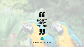 Wording Cover Layout - #Saying #Quote #Wording #sign #brand #perico #quotes #bird