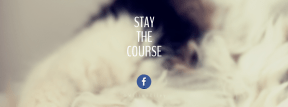 Wording Cover Layout - #Saying #Quote #Wording #mammal #white #font #snout #peacefully #whiskers #kitten #line