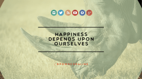 Wording Cover Layout - #Saying #Quote #Wording #line #brand #close #geometric #wildlife #animal