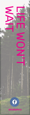 Wording Banner Ad - #Saying #Quote #Wording #conifer #coniferous #tree #font #sky #text #biome #temperate #brand #line