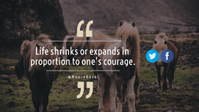 Wording Cover Layout - #Saying #Quote #Wording #symbol #quote #font #grazing #azure #blue #rock #horse