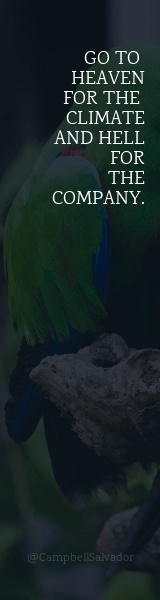 Green,                Nature,                Atmosphere,                Text,                Sky,                Water,                Poster,                Font,                Computer,                Wallpaper,                Screenshot,                Branch,                Orange,                 Free Image