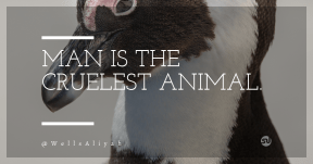 Quote Card Design - #Quote #Saying #Wording #social #penguin #bird #mediatype