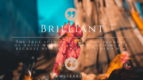 Wording Cover Layout - #Saying #Quote #Wording #quote #galliformes #circular #chicken #button #rooster #computer #shapes #vertebrate #spring
