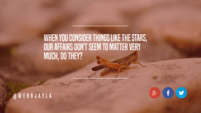 Wording Cover Layout - #Saying #Quote #Wording #invertebrate #grasshopper #insect #area #clip #circle #product