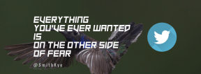 Wording Cover Layout - #Saying #Quote #Wording #wing #coraciiformes #computer #area #bird #bluebird #fauna #flapping
