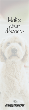 Wording Banner Ad - #Saying #Quote #Wording #dog #media #cockapoo #poodle #like #social #goldendoodle #crossbreeds
