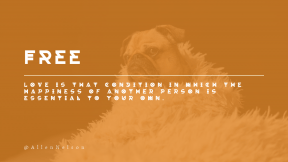 Wording Cover Layout - #Saying #Quote #Wording #pug #dog #toy #breed #carnivoran #mammal #companion