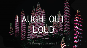Wording Cover Layout - #Saying #Quote #Wording #wavy #flowers #squares #decoration #pine #christmas #lupin #fir #plant