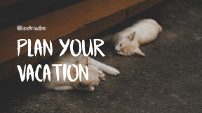 Wording Cover Layout - #Saying #Quote #Wording #kitten #wooden #whiskers #white #dog #mammal #sized #like #stairs