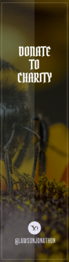 Wording Banner Ad - #Saying #Quote #Wording #social #pollen #insect #orangetype #gathering #shot #nectar